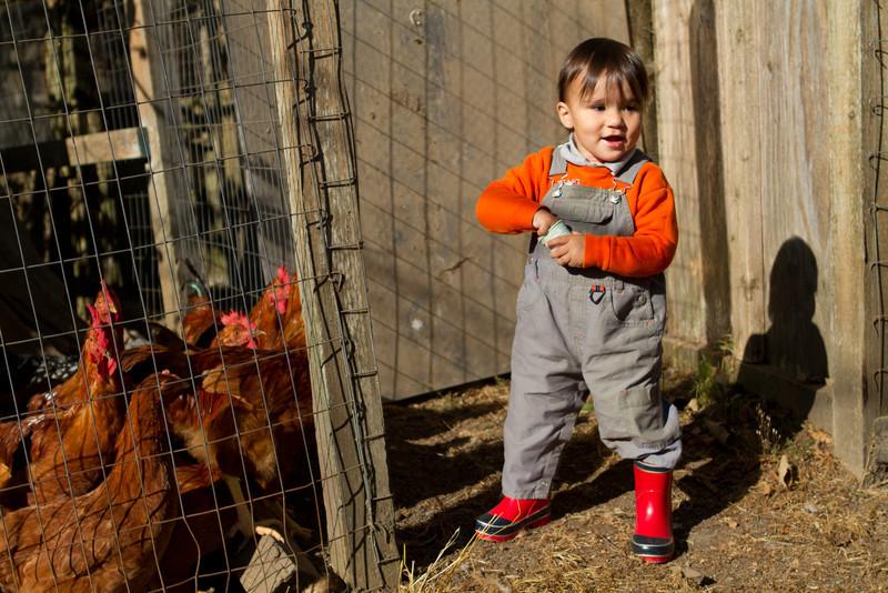 PumpkinPatch2012-46.jpg