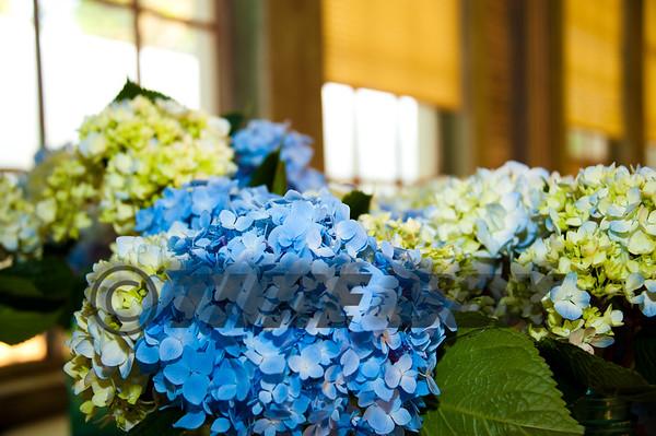 Trichell Wedding 2011
