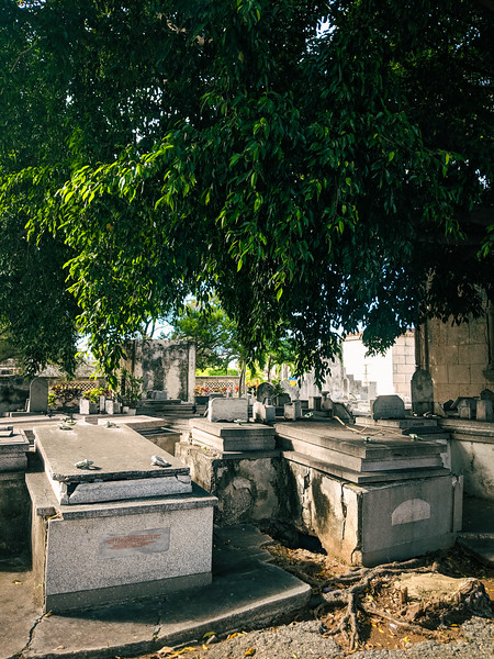 havana colon cemetery-2.jpg