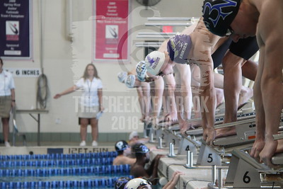 January 18, 2019 Swim & Dive Meet