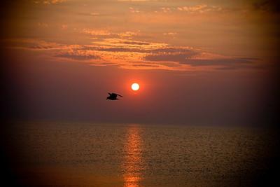 Grand Haven Sunset 60711