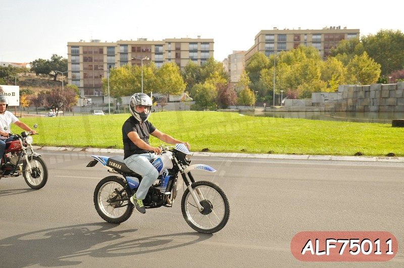 ALF75011.jpg