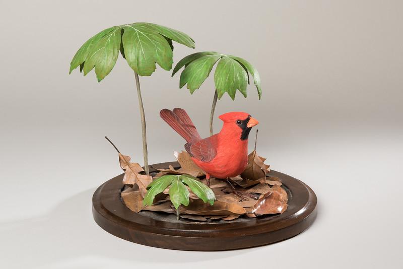 Still Life Dan Holman Birds (15 of 50).jpg