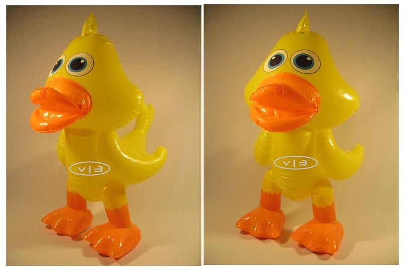 IF- Animal- Duck.jpg