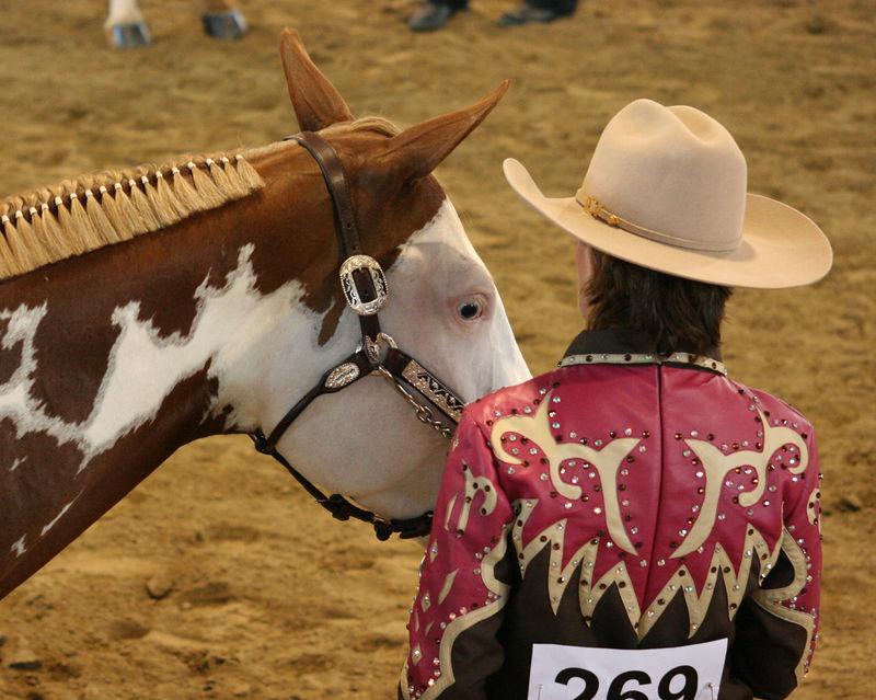 horse show2.jpg