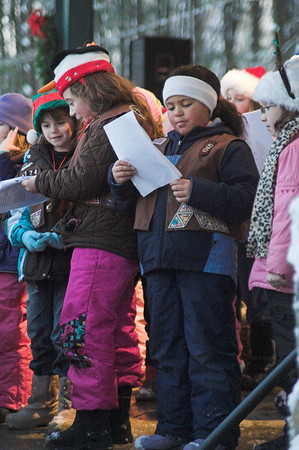 Rotary Tree Lighting 2009
