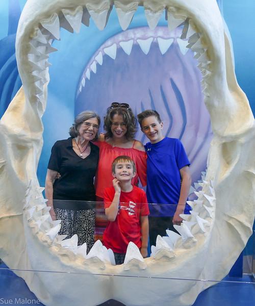 Rogers memorial at the aquarium (25 of 71).jpg