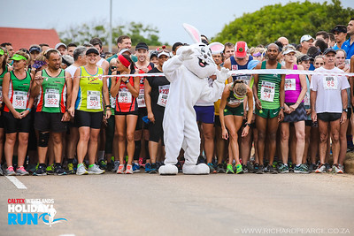 Caltex Wavelands Holiday Run - 2019