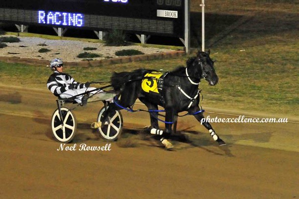 TAB Pace - Penrith Paceway, 16th May, 2019