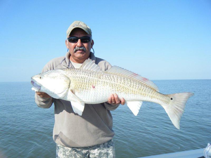 Amos Mena 42 Inch RedFish