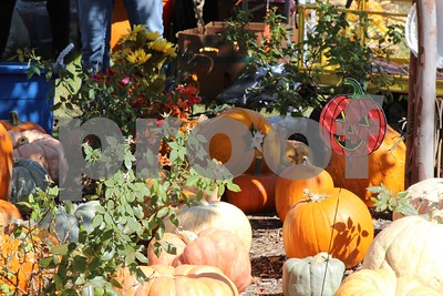 10/1/17 Lanes Chapel Methodist Church Opens Pumpkin Patch With Dog Costume Contest by Mike Baker