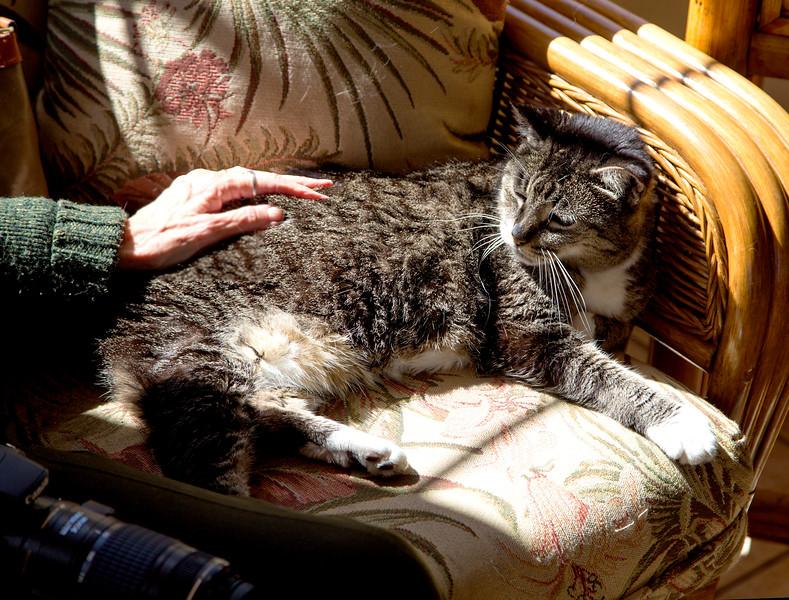 "Carol says ""Goobye"" to the hotel cat, Sheba."