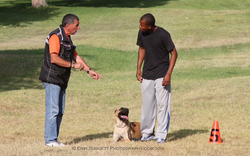 CSAU, CGC, & SAFE Dog Evaluations - SCABR French Ring Trial, July 13, 2012