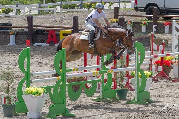 Sábado 19/11 Semana del Silla Argentino 2016 - Club Alemán de Equitación , Buenos Aires