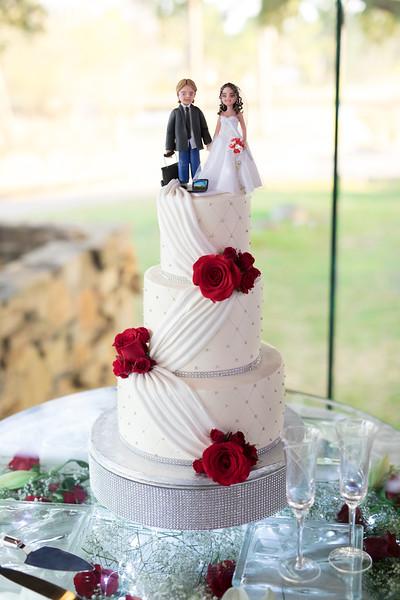 Houston Wedding Photography ~ Janislene and Floyd-1445.jpg