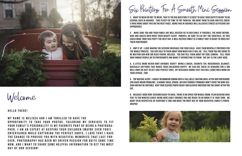 Sunflower Page 1-2.jpg