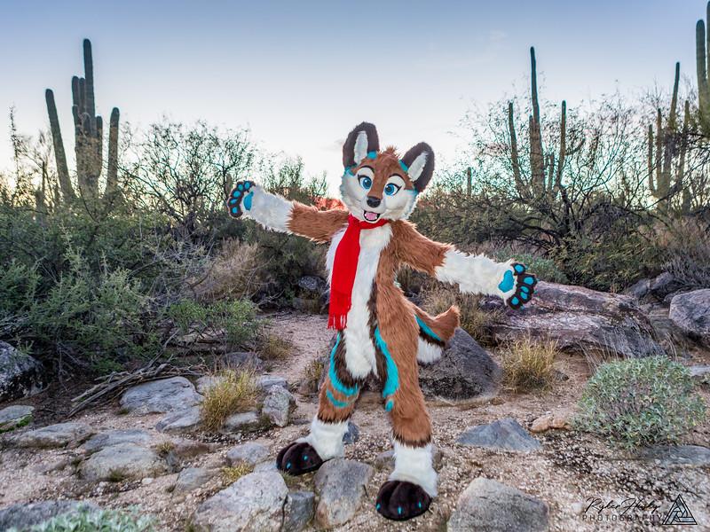 Arizona New Years 2019-094-Edit.jpg