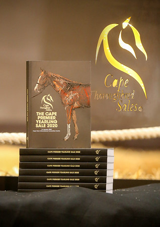 Cape Thoroughbred Sales 2020