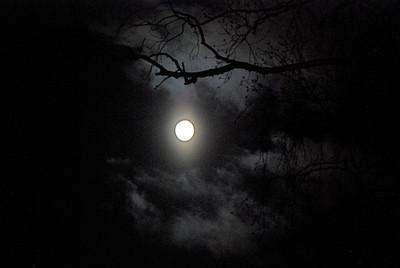 2011 02 18: Early Morning Full Moon