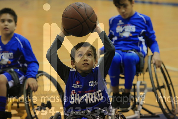 Ft Lauderdale Jr Sharks Wheelchair Basketball Team