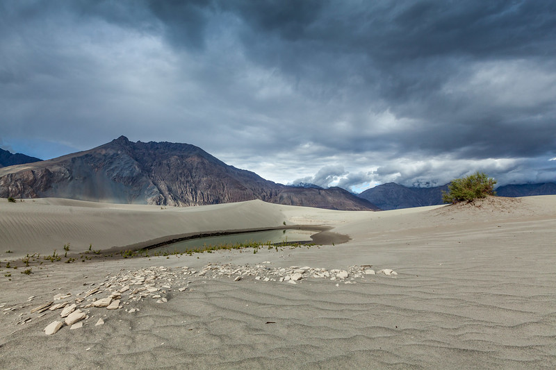 Sand dunes in Himalayas. Hunder, Nubra valley, Ladakh