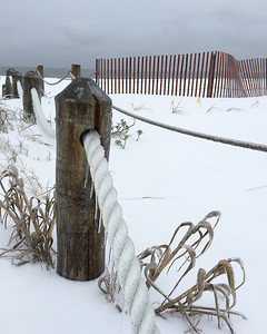 Edisto Snow Scenes
