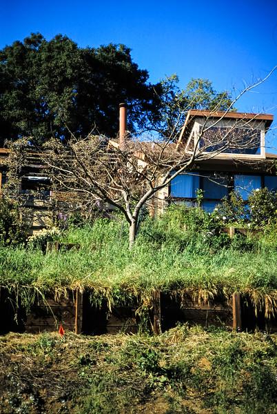 1991-1992 Building 111 Vaca Creek Way-114.jpg