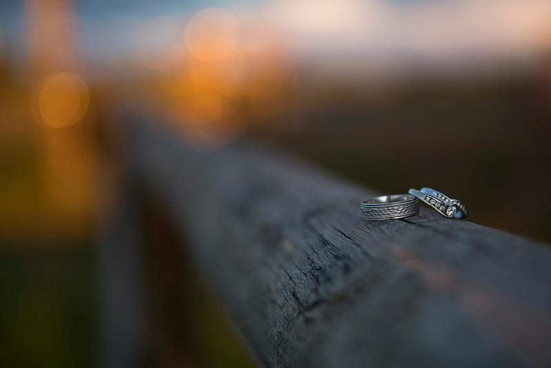 Rings SM.jpg