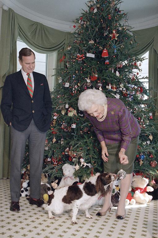. As President-elect George Bush looks on as his wife Barbara decorates the Christmas at Bush\'s Washington residence, Dec. 11, 1988. (AP Photo/Ron Edmonds)