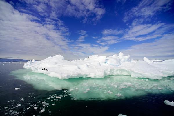 Ultimate Antarctica 2015