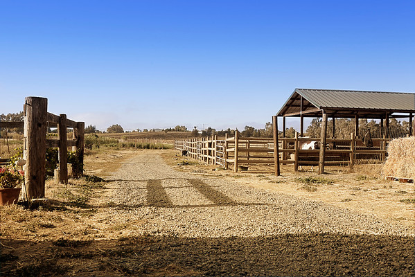 Say Hay Farms