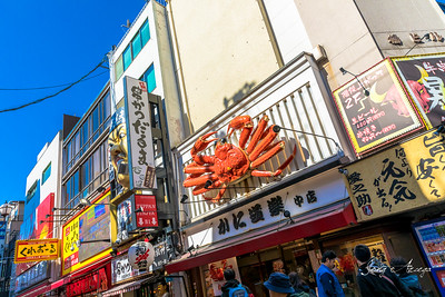 2019 Japan Day 8-Osaka Dotonbori Day Time
