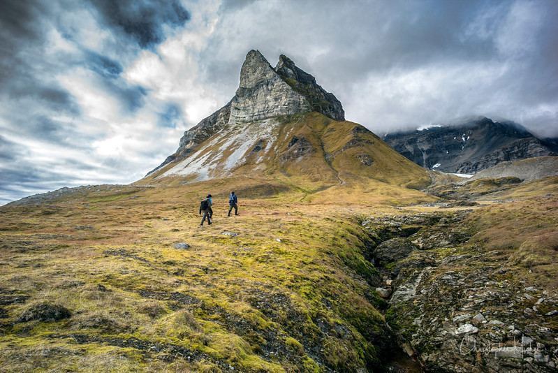 After arriving on shore from a Zodiac, the exploration team started their hike toward Alkehornet, Svalbard. 2016-09-09