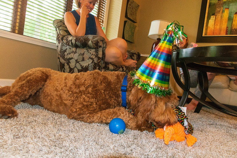 Calvin-Birthday-1year-presents2.jpg