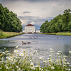 Canada Geese and the Schloss, Nymphenburg Park, Munich, Germany