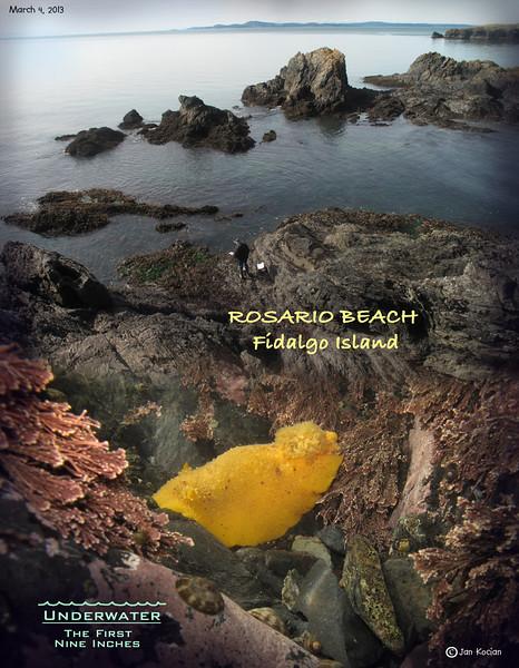 Rosario Beach, Fidalgo Island. March 4, 2013