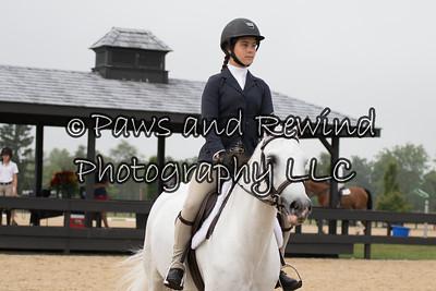 Pony/Childrens Equitation Pony