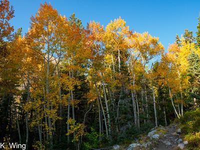 Baker Creek to Pyramid Peak - Great Basin NP 10-01-2020