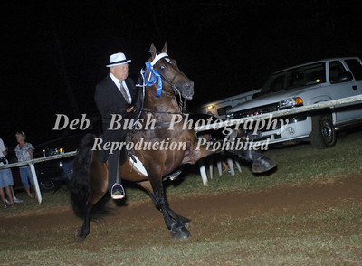 CLASS 28  PICKENS COUNTY WALKING HORSE MEMBERS ONLY SPECIALTY