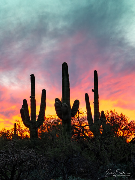 Sabino Sunset 10=29=2018c-.jpg