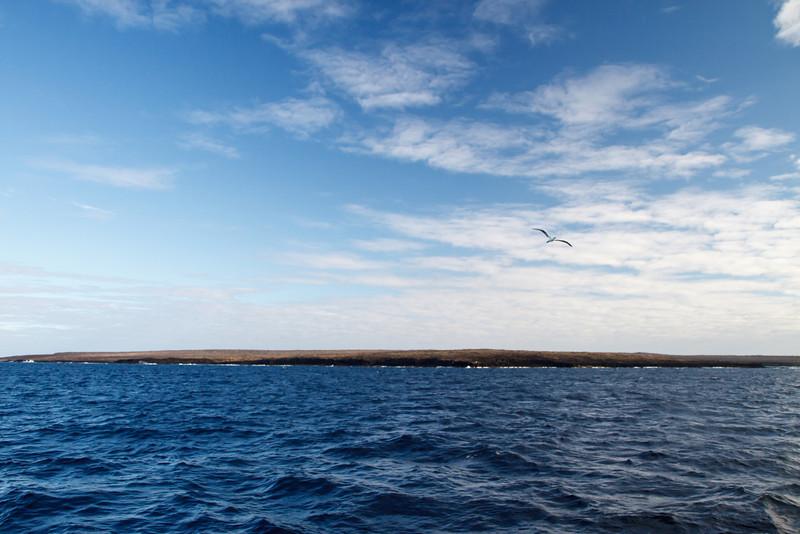 Genovesa, Galapagos, Ecuador (11-25-2011) - 756.jpg