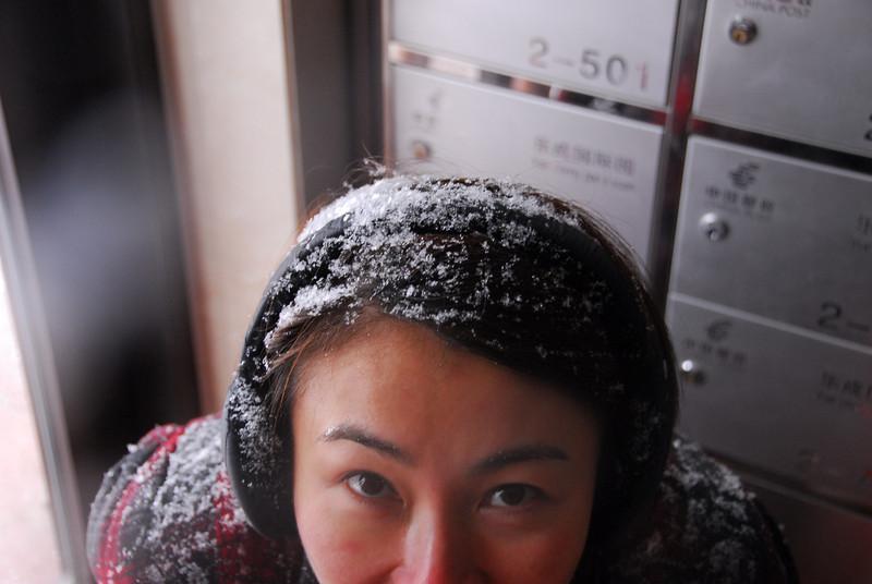 [20100103] 1st 2010 Snow in Beijing (98).JPG