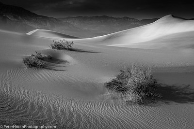 Sand: Shapes and Shadows