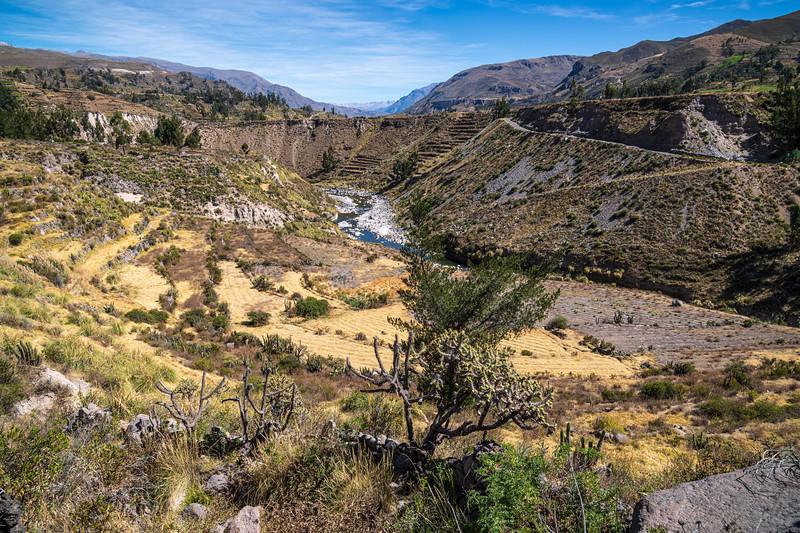 Walk to Yanque from Belmond Las Casitas Chivay-8982.jpg