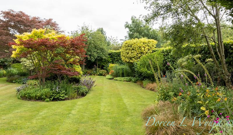 Beechleigh Garden - Jacky O'Leary garden designer_2991.jpg