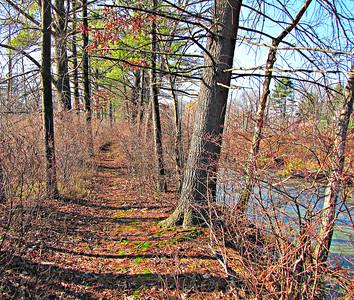 Billerica Bay Circuit Trail - some exploring (Nov. 17)