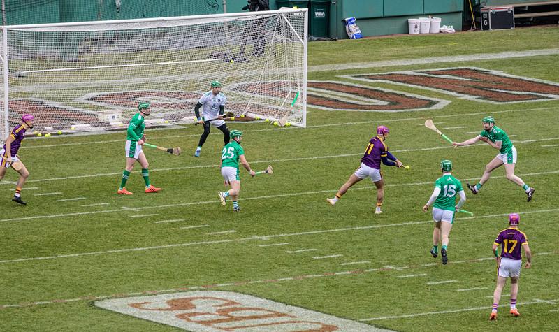 2018 Limerick vs Wexford -_8503678.jpg