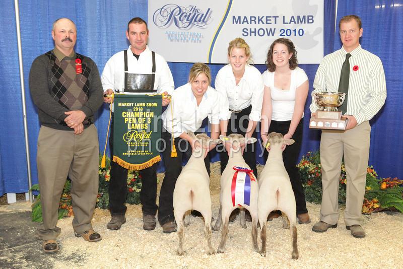 RAWF Market Lamb Show Champions 2010