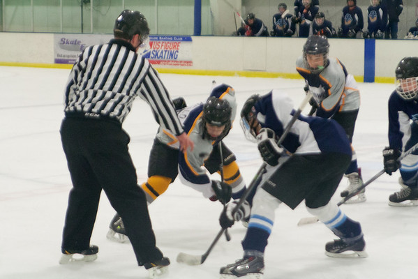 Regency Panthers 2 at Hatfield Ice Hawks Blue 1-12-2014