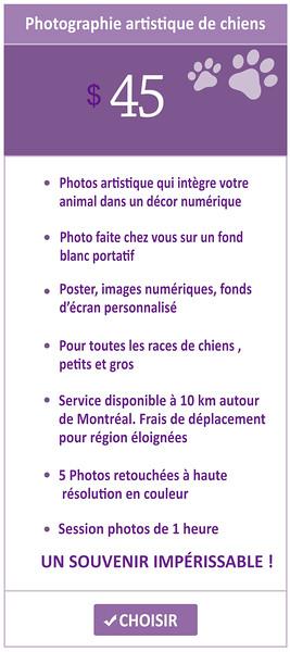 booking-8.jpg